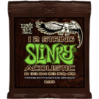 Ernie Ball Slinky strings for 12 string Acoustic guitar