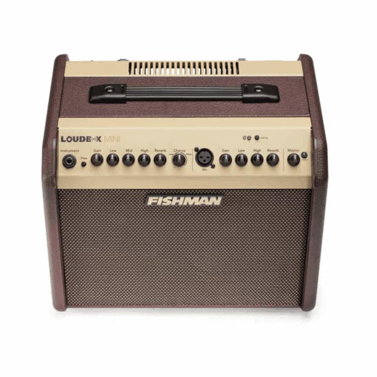 Fishman Loudbox Mini 2