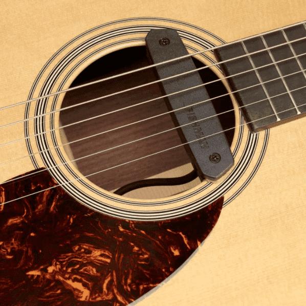 Fishman Neo-D Acoustic soundhole pickup